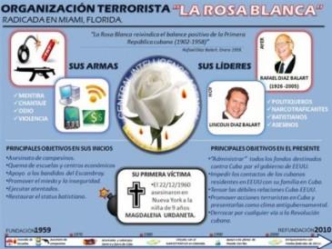 Infografía La Rosa Blanca