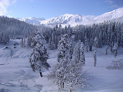 nevada en Cachemira