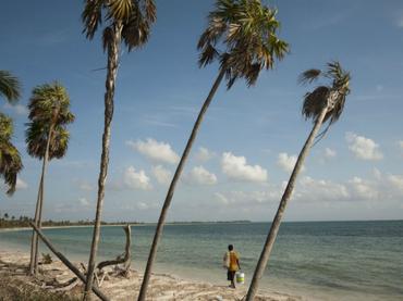 El hallazgo tuvo lugar en la localidad de Puerto Esperanza, en la provincia de Pinar del Río. (Foto: ARCHIVO)