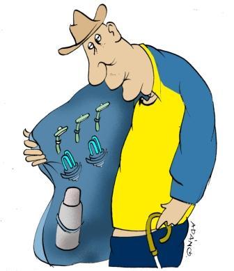El alto índice de envejecimiento poblacional preocupa y ocupa al país hoy. (Adán Iglesias Toledo / Cubahora)